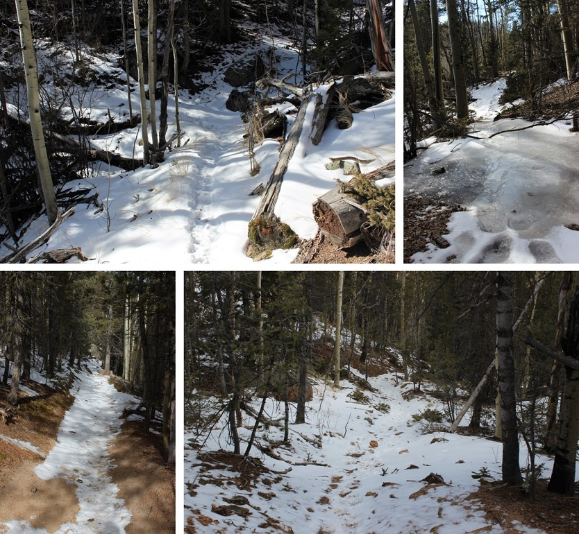 4 Trail Conditions