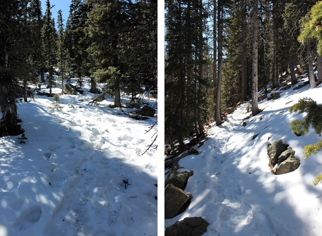 11 Snow On Trail