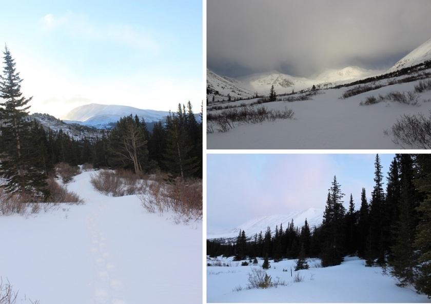 5 Trail